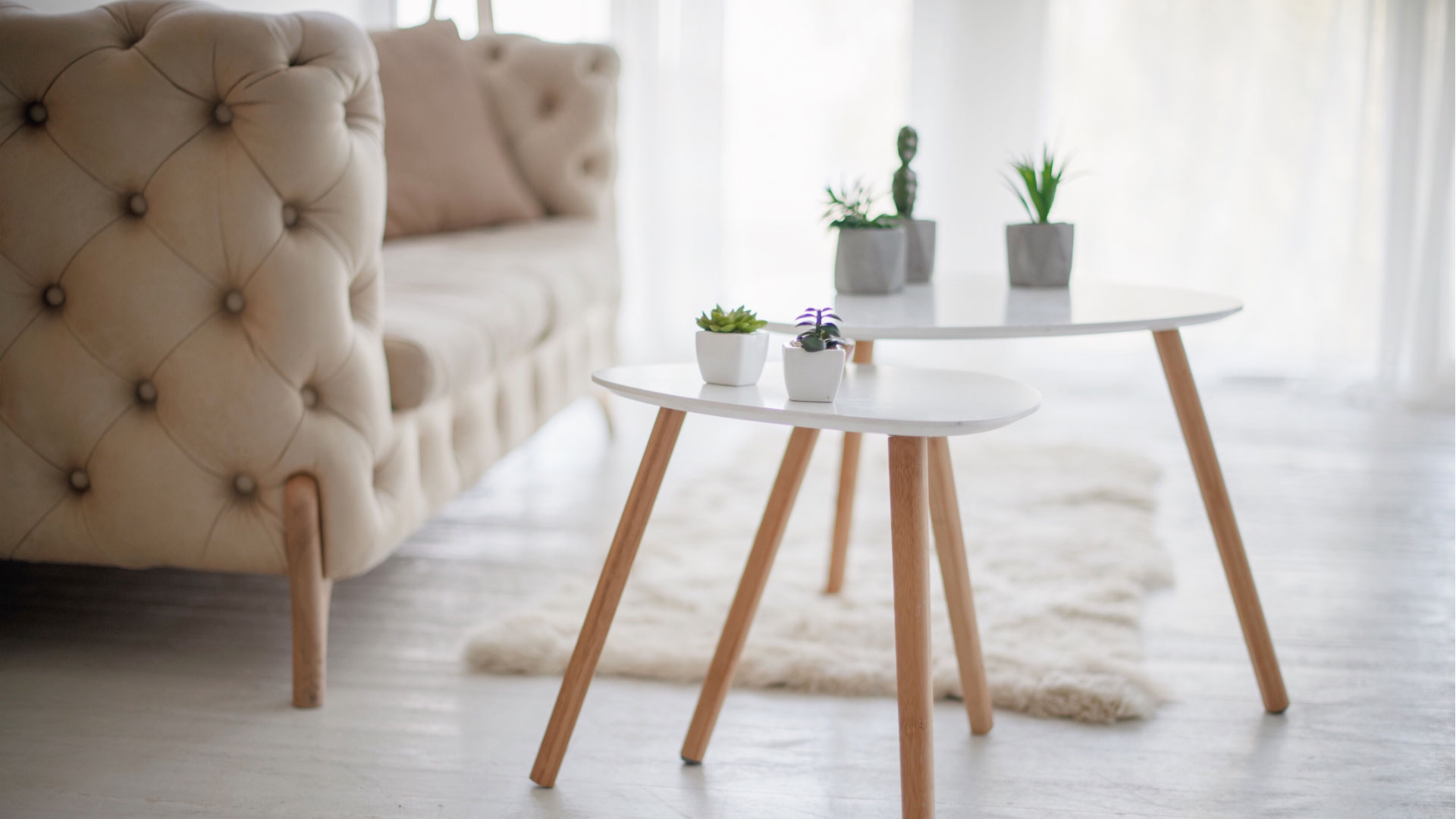 coffee table with plants